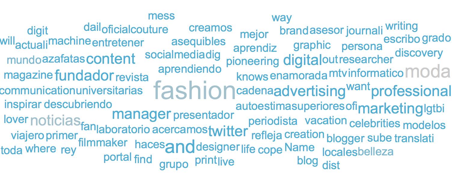 Nube de etiquetas basada en la biografía de las audiencias del #MBFWM16 de febrero (más azul) y septiembre (más gris)