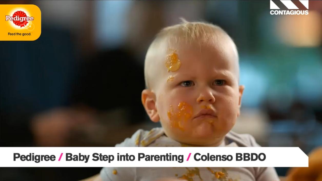 Audiense blog - Pedigree   Baby Step into Parenting